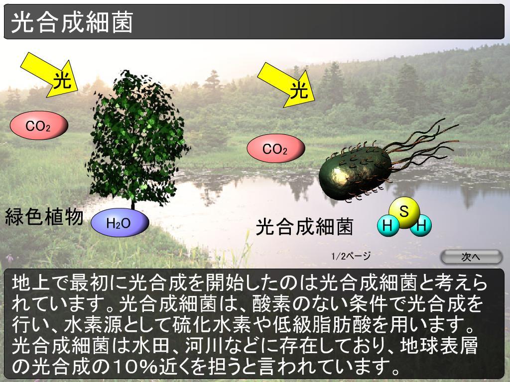 0317 画像はこちらからお借りしました 突然ですが、光合成細菌をご存知ですか。光... 【微生