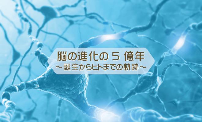 外識・内識01