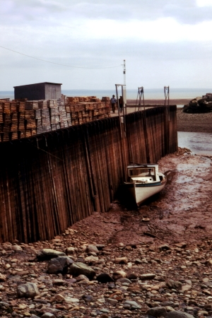 Bay_of_Fundy_Low_Tide.jpg